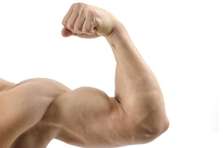 Se i tuoi muscoli stanno bene, stai bene anche tu !